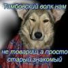 Аватар пользователя Корольков Александр Евгеньевич